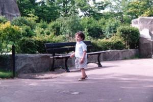 Présentation  dans Détente najib-au-zoo-300x200