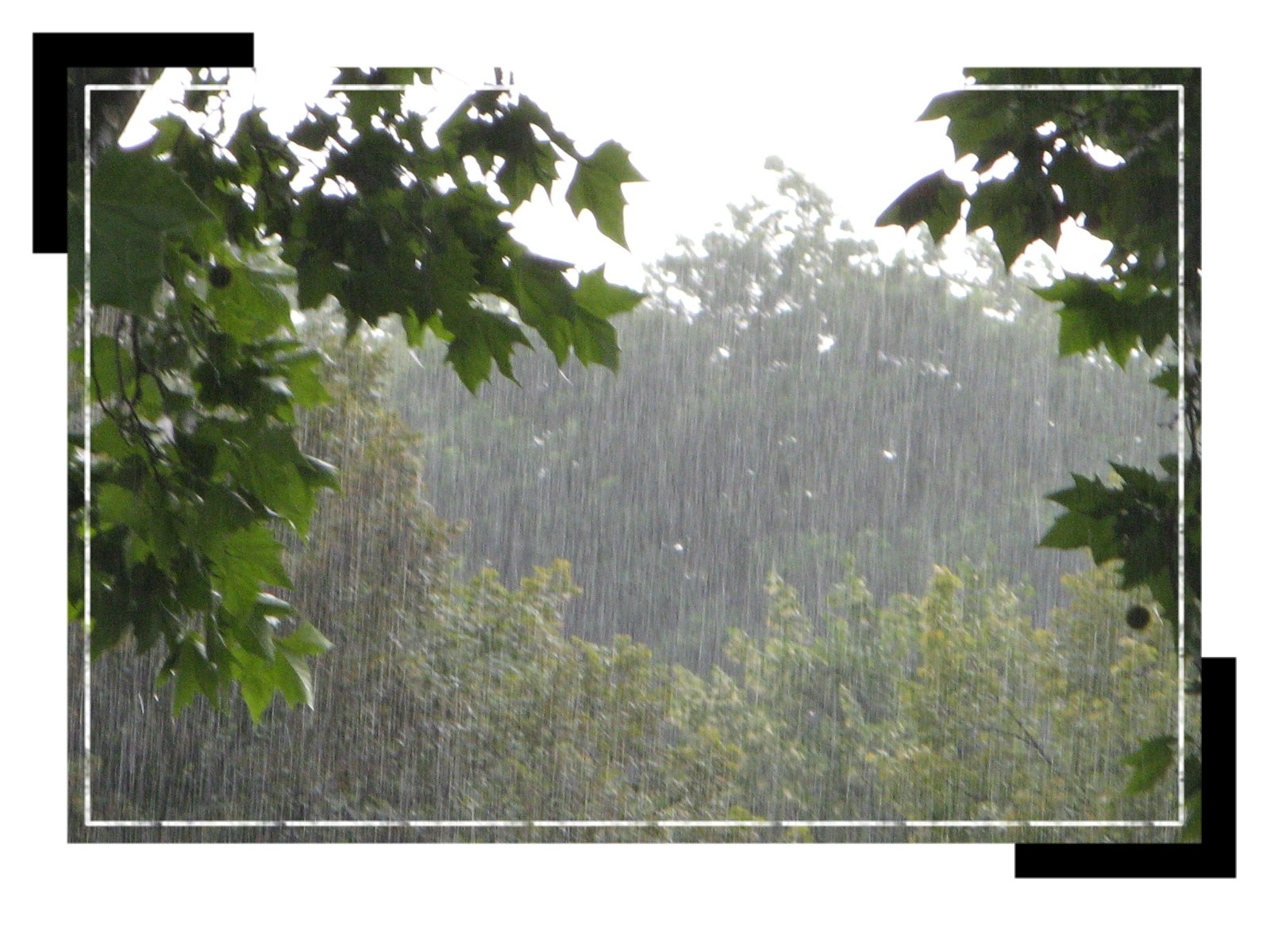 pluieetorage0907.jpg