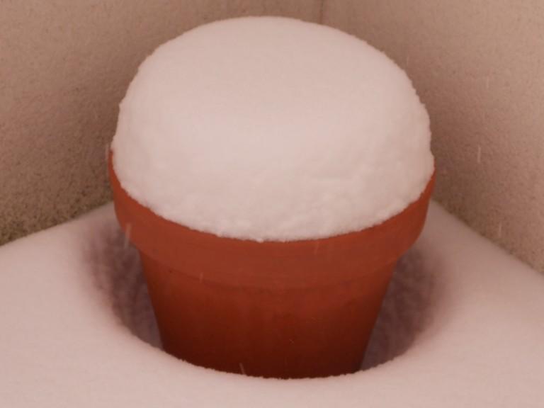 neige20.01.2013