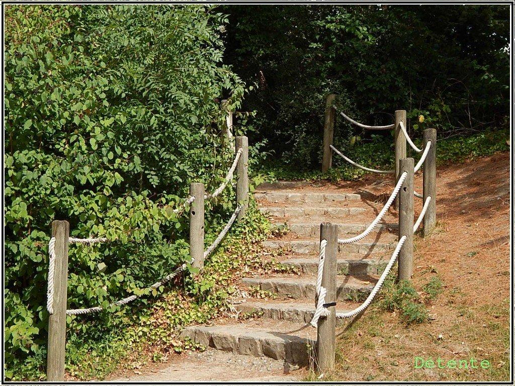 escalier2015